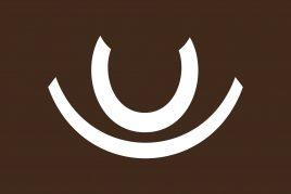 ARAMIGO